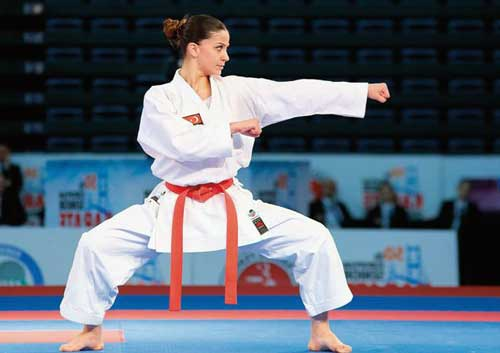 como hacer un curriculum deportivo de karate